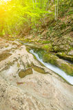 Mountain river flowing in the valley on a background of sunlight Royalty Free Stock Image
