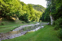 Mountain river flowing through valley. Landscape with a beautiful valley and a river on mountains Royalty Free Stock Photo