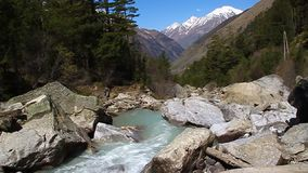 Mountain river flowing in the valley stock footage