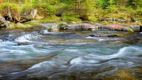 Mountain river, Flowing water, Flow Creek Royalty Free Stock Images