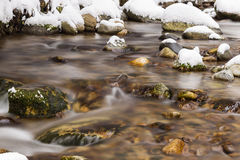 Mountain river flowing in winter snowy forest. Royalty Free Stock Images