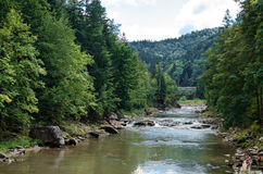 Mountain river. River flowing in the woods and mountains royalty free stock photography