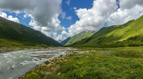 Mountain river. Flows through the alpine meadow in Caucasus Stock Image