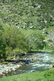 Mountain river flows in forest under bias Stock Photo