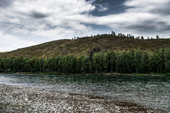 The mountain river flows among forested hills on a cloudy day Royalty Free Stock Photography