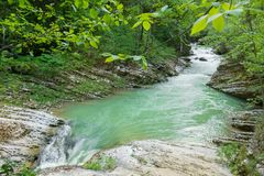 Mountain river flows into the gorge in summer royalty free stock photography