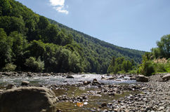 Mountain river. The river flows in mountains Carpathians royalty free stock images