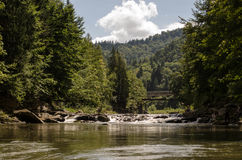 Mountain river. The river flows in mountains Carpathians royalty free stock photography