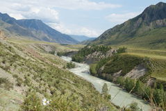 Mountain River. The river flows in a small Gorge. Range of magnificently grow herbs. From all sides away mountains Royalty Free Stock Image