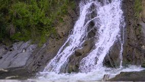 The mountain river flows rapidly in the afternoon among the trees beautiful stock video
