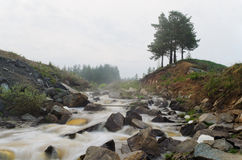 The mountain river in a fog Royalty Free Stock Images