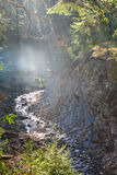 Mountain river, fog and rocks of Carpathian Mountains in Ukraine Royalty Free Stock Images