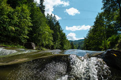 Mountain river. In the forest royalty free stock photography