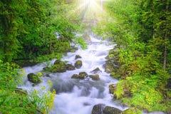 Mountain river Stock Photos
