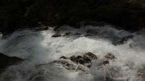Mountain river in the forest close up. Summer stock footage
