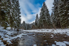 Mountain river with forest covered by snow, Tatra Mountains Royalty Free Stock Photo