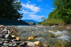 Mountain river in forest Stock Photography