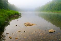 Mountain river and forest in fog at dawn Stock Images