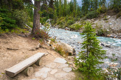Mountain River Forest Landscape Royalty Free Stock Photos
