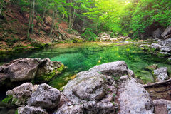 Mountain river in forest and mountain terrain. Stock Photo