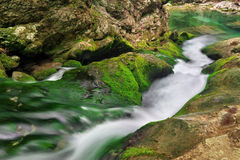 Mountain river in forest terrain. Royalty Free Stock Images