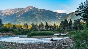 Mountain river and forest trees on the sunset, Altai Mountains, Kazakhstan.  Royalty Free Stock Photo