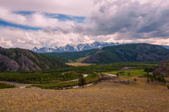 Mountain river forest valley Stock Image