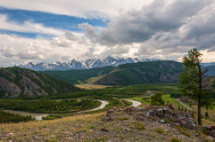 Mountain river forest valley Royalty Free Stock Images