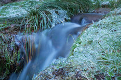 Mountain river with frozen grass during winter Royalty Free Stock Photos