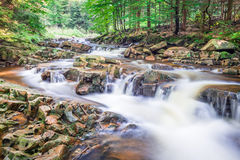 Mountain river full of clean water Stock Image