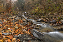 Mountain River.Gabala.Vandam.Azerbaijan Royalty Free Stock Photos