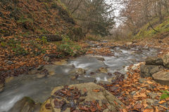 Mountain River.Gabala.Vandam.Azerbaijan Royalty Free Stock Images