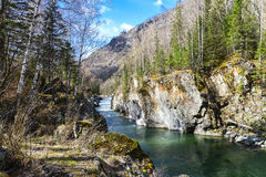 Mountain river in gorge Stock Photography