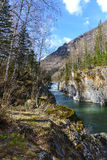 Mountain river in gorge Stock Images