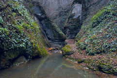 The mountain river in gorge. The mountain river in a gorge in the mountains of the Caucasus Stock Image