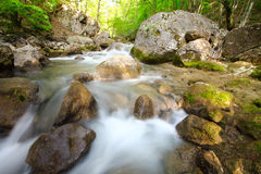 The mountain river in gorge with a spring Stock Photo