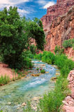 Mountain river in Grand Canyon Royalty Free Stock Photos
