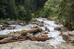 Mountain river in the green forest Stock Images