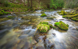 Mountain river with green stones Royalty Free Stock Photos