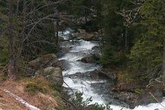 Mountain river in high Tatras, Poland Royalty Free Stock Image