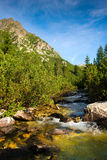 Mountain river in High Tatras in Slovakia Stock Photos