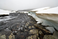 Mountain river among ice and glaciers,sayan rocks. Stock Image