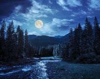 Mountain River In Pine Forest At Night Stock Images