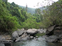 Mountain river in Indian jungle forest Stock Photography