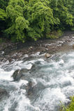 Mountain river in Japan Royalty Free Stock Image