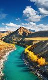 Mountain river Katun Royalty Free Stock Photos