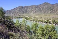 Mountain river Katun along Chuysky Trakt Royalty Free Stock Photo
