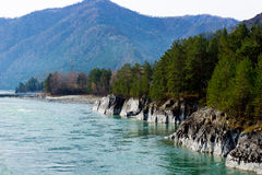 A mountain river Stock Images