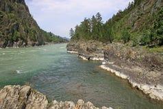 Mountain river Katun in Altai mountains, Russia Royalty Free Stock Image