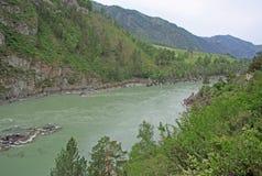 Mountain river Katun, Altai mountains, Russia Stock Photos